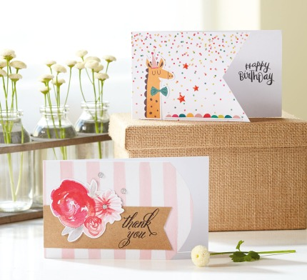 CTMH Cut Above™ Dapper Giraffe and Beautiful Blossoms Card Kits