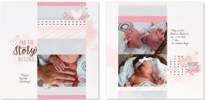 Cut Above® The Story Begins #ctmh #closetomyheart #cutabove #scrapbooking #babygirl #thestorybegins #layoutkit #scrapbookingkit #babyalbum #milestones #girl